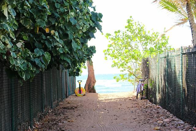 Hawaii Beach (8)