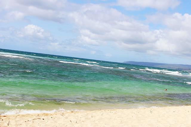 Hawaii Beach (9)