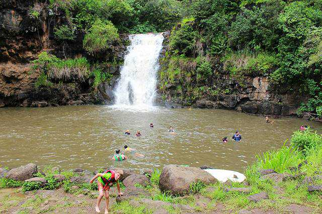 Waimea Valley (5)