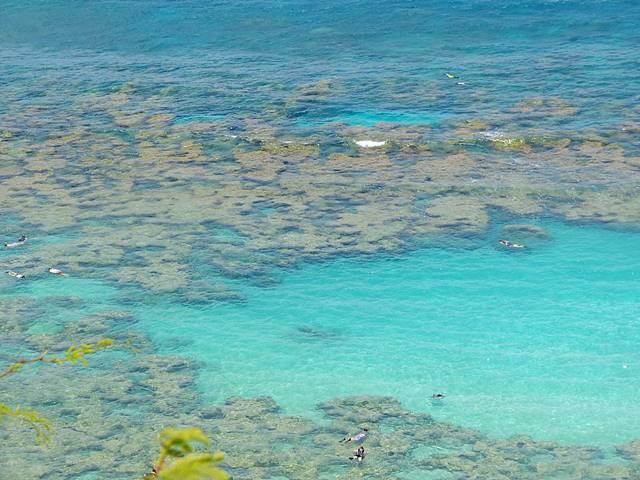 Hanauma Bay (10)