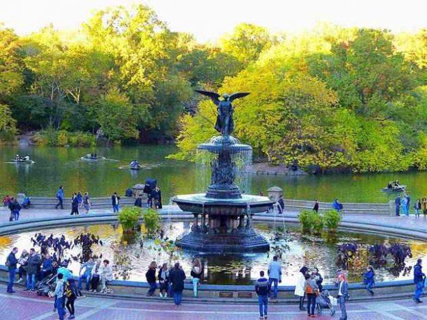 new-york-foliage-central-park