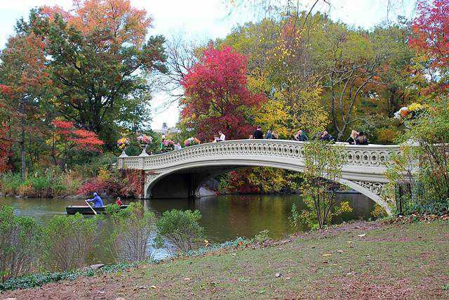central-park-foliage-10