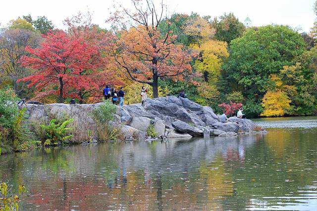 central-park-foliage-14