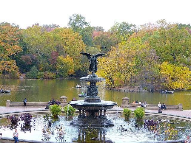 central-park-foliage-2