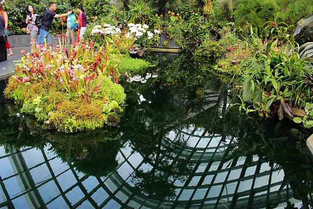 gardens-by-the-bay-11