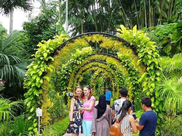 Singapore Botanic Gardens (1)