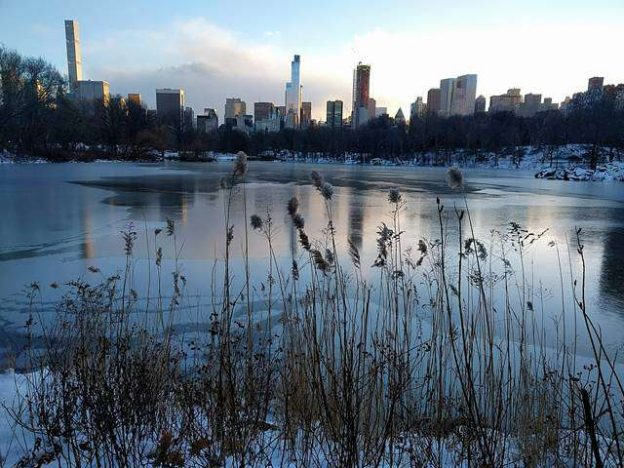 Central Park NYC in Snow (9)
