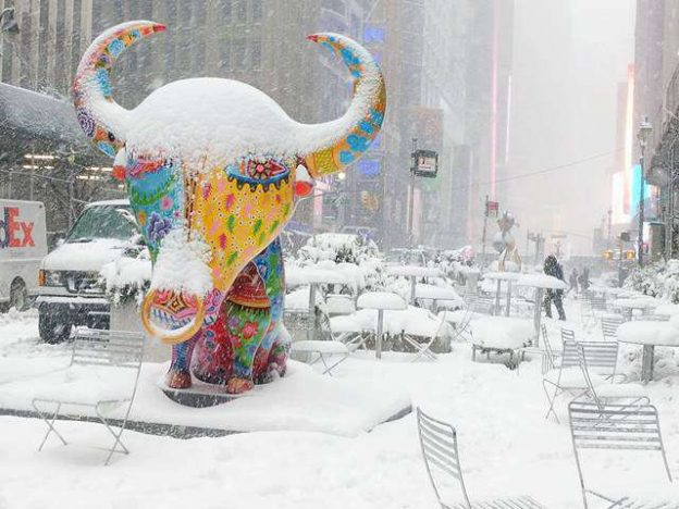Snow in NYC (1)