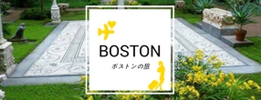 boston-image