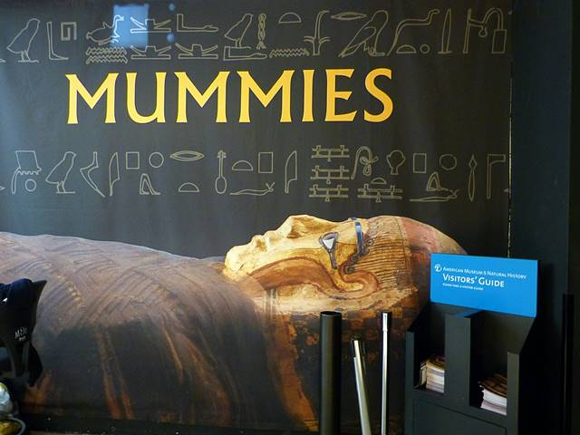 AMNH Mummies (4)