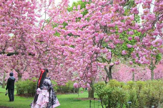 BBG Spring (3)