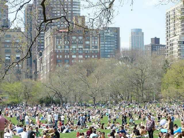 Central Park Spring (13)