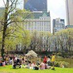 Central Park Spring (29)