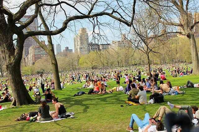Central Park Spring (30)