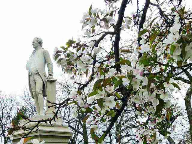 Central Park Spring (5)