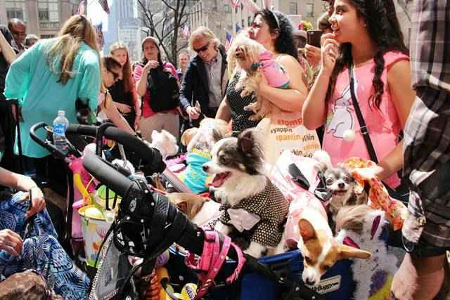 Easter Parade NY (16)