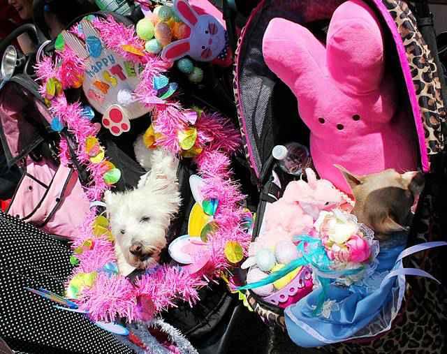 Easter Parade NY (17)