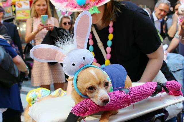 Easter Parade NY (21)