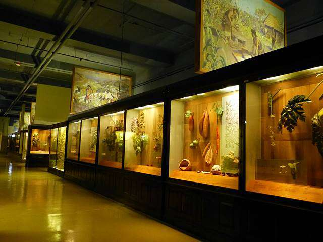 Field Museum (11)