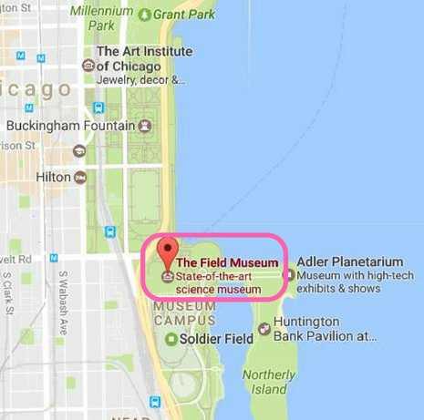 Field Museum Map