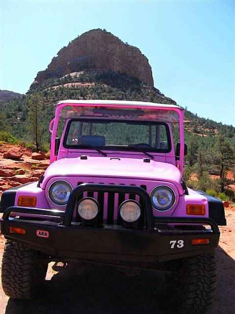 Pink Jeep Tour (3)
