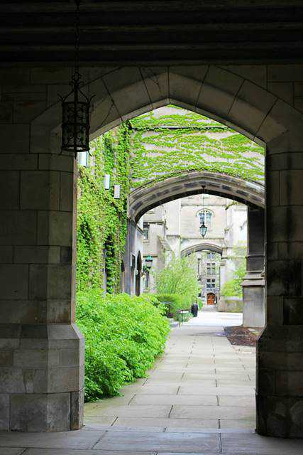 University of Chicago (10)