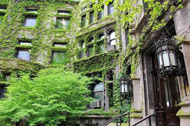 University of Chicago (3)