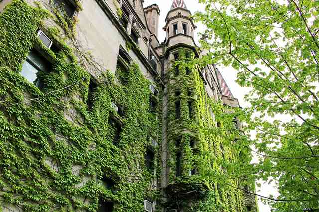 University of Chicago (4)