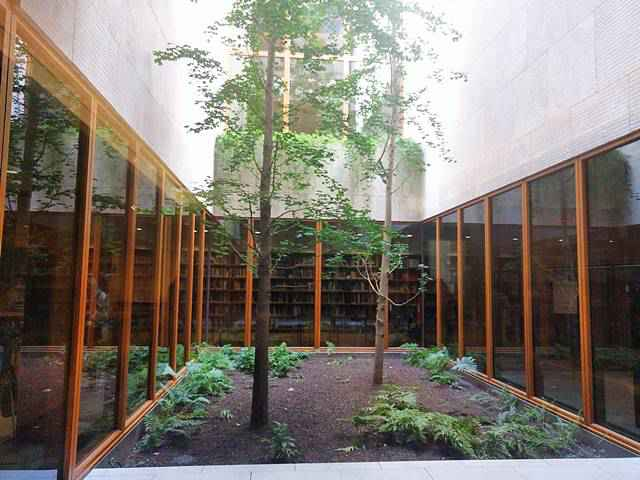 Barnes Foundation (11)
