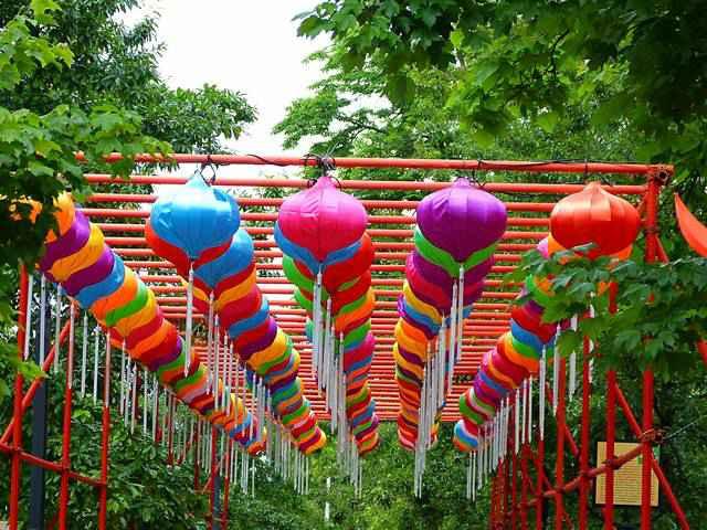 Chinese Lantern Festival (5)