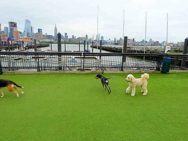Hoboken (2)