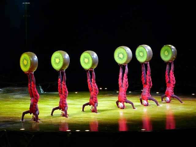Cirque du Soleil OVO (1)