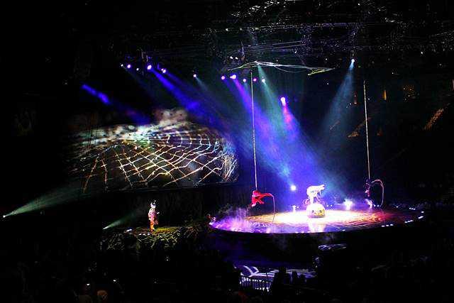 Cirque du Soleil OVO (11)
