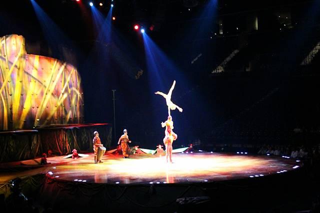 Cirque du Soleil OVO (12)