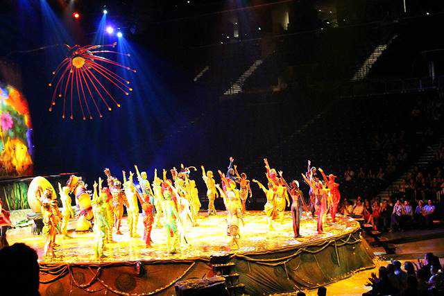 Cirque du Soleil OVO (18)