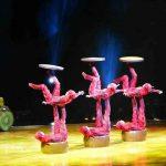 Cirque du Soleil OVO (2)