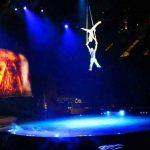 Cirque du Soleil OVO (9)