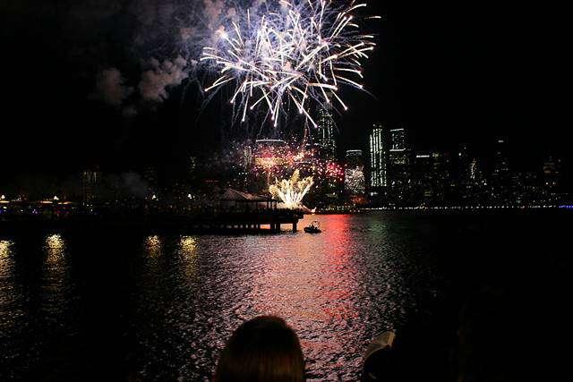 New York Fireworks (10)