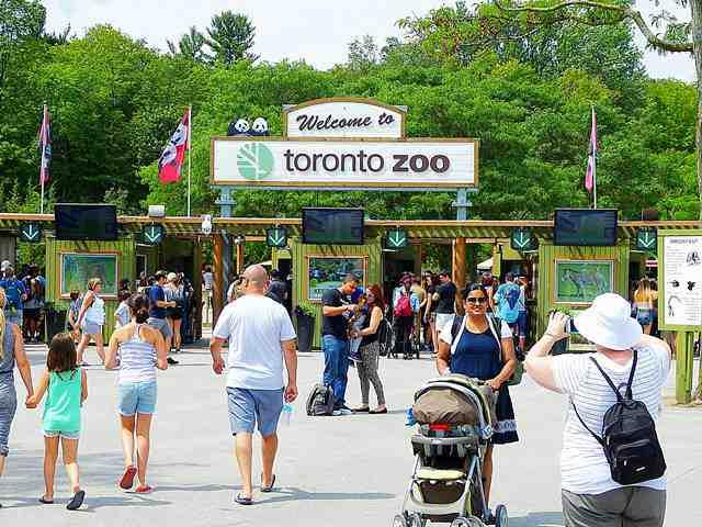 Toronto Zoo (7)
