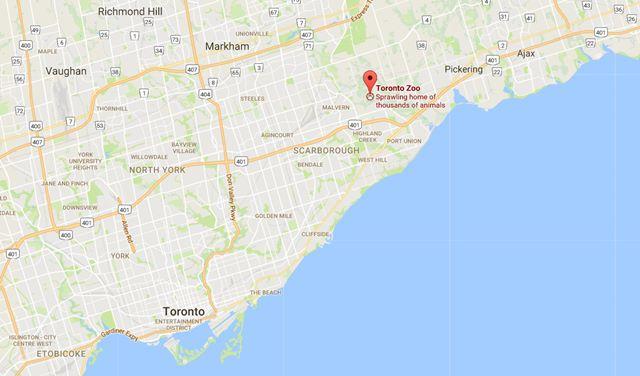 Toronto Zoo Map