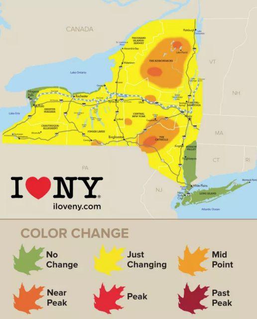 New-York-Foliage-920-926