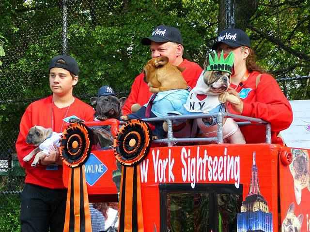 Halloween Dog Parade NYC (1)