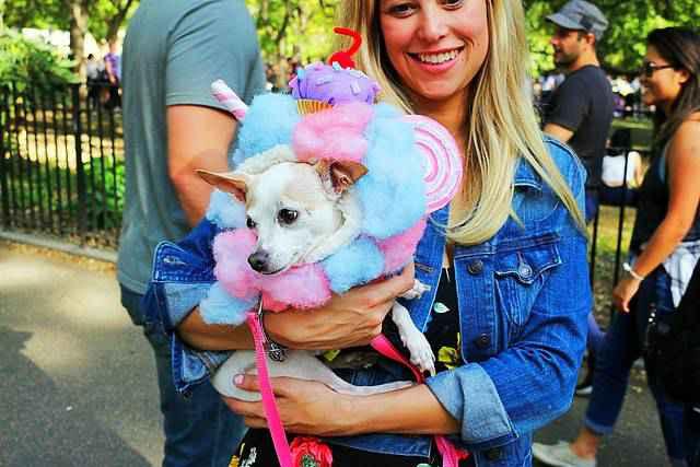 Halloween Dog Parade NYC (17)
