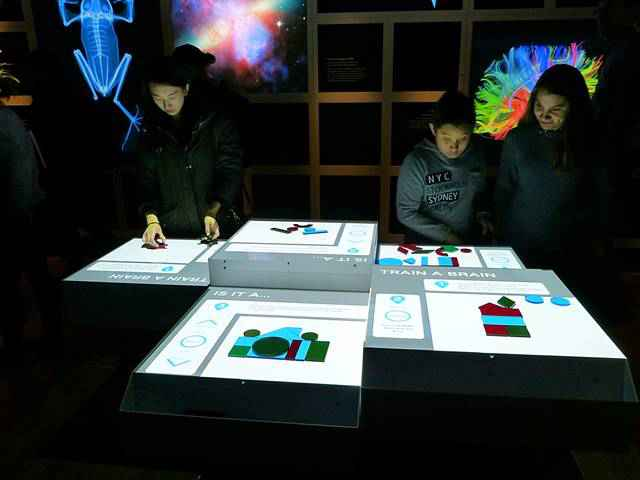 American Museum of Natural History – Our Senses (11)