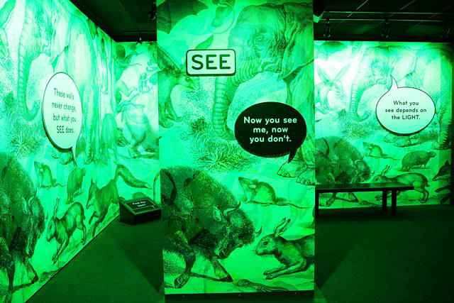 American Museum of Natural History – Our Senses (9)
