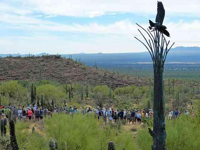 Arizona-Sonora Desert Museum (12)