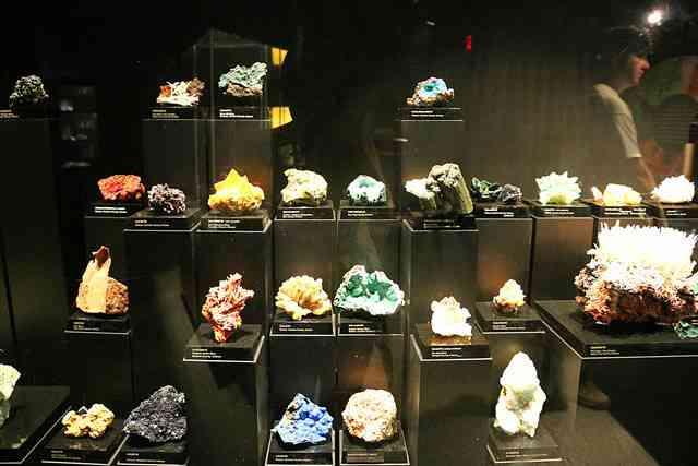 Arizona-Sonora Desert Museum (2)