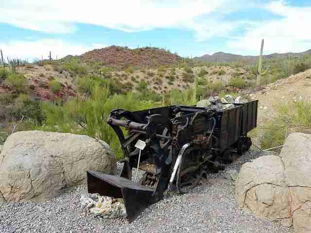 Arizona-Sonora Desert Museum (8)