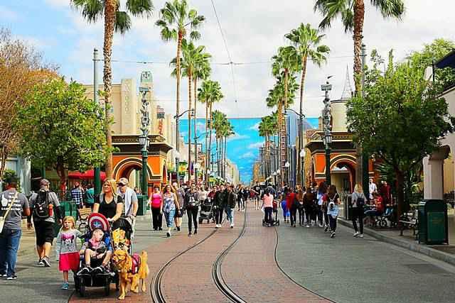 Disney California Adventure (13)
