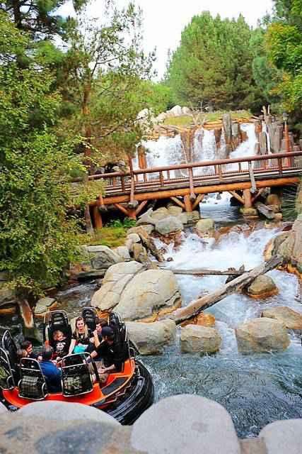 Disney California Adventure (5)